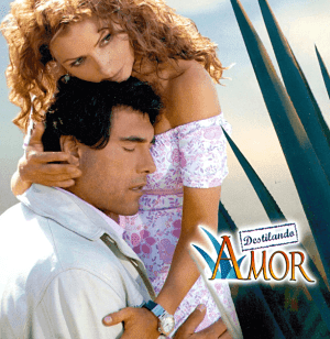 Ver novela Destilando Amor Capítulo 99