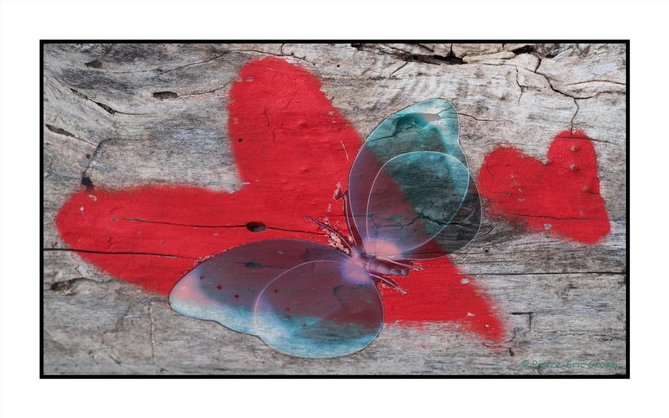Papillon sur deux coeurs