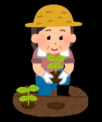 苗を植える農家の女性のイラスト