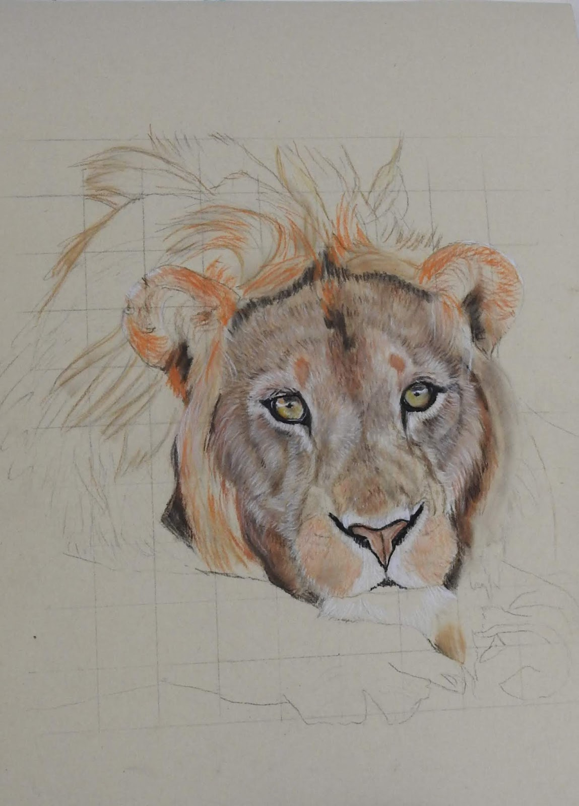Fisher 400 Art Paper How To Draw Shear And Moment Diagrams For A Beam Pencilpix By Sue Clinker 22 08 Practice Piece Lion In Pastel On Check Out My Portrait Galleries