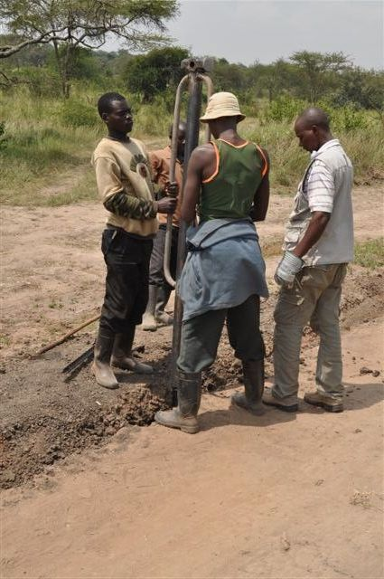 Tnh Wildlife Management Solutions Akagera National Park