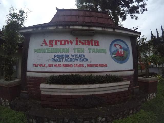 Kantor Agrowisata Kebun Teh Tambi