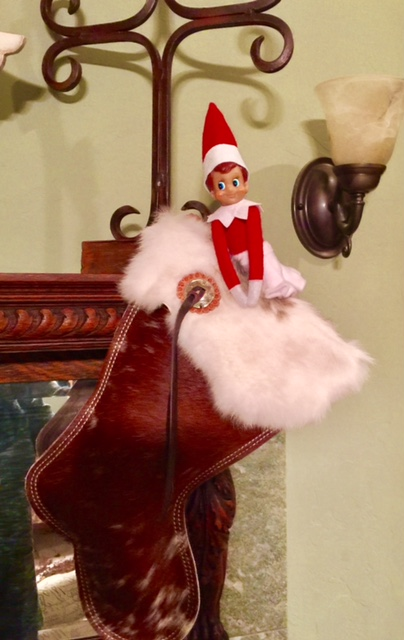 Pine Creek Style This Is Not Our Elves First Rodeo At The