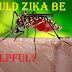 Zika Virus May Be Helpful To Kill Brain Cancer Cells: Expirementing