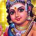 பழனியும் நவபாஷாண சிலை வரலாறு _ palani temple history in tamil