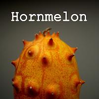 http://kolonihavelivet.blogspot.com/2015/12/hornmelon-eller-hornagurk.html