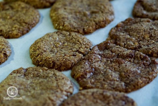Schokoladensterne mit Kochschokolade funktionieren ebenfalls nicht - Foodblog Topfgartenwelt
