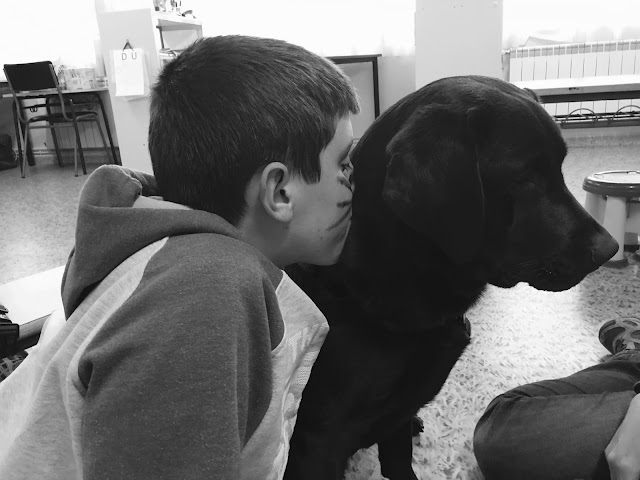 La presencia de perros en hospitales mejora el bienestar de los niños ingresados