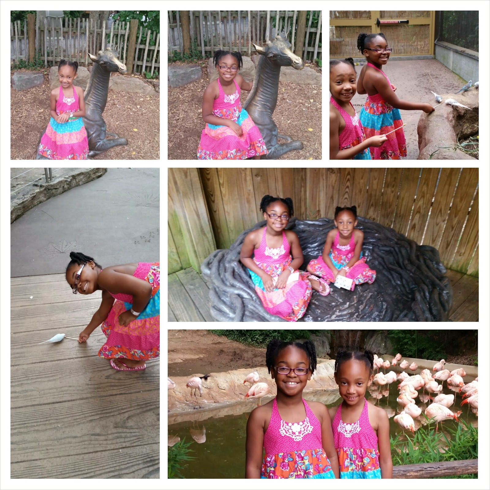 Our Time at Zoo Atlanta- #ZooAtlanta via ProductReviewMom.com
