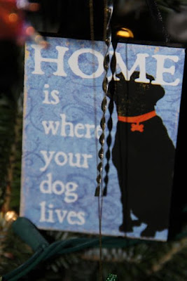 may Christmas find you at home with your dog