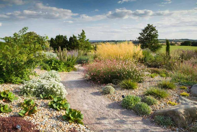 El jard n seco de rhs garden hyde hall - Recuperar jardin seco ...