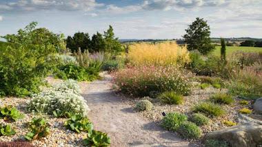 El jardín seco de RHS Garden Hyde Hall