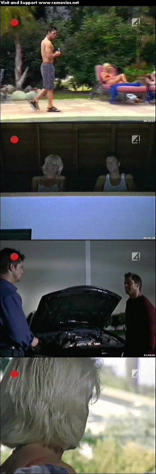 Dangerous Invitations 2002 UNRATED Dual Audio Hindi TVRip 850mb