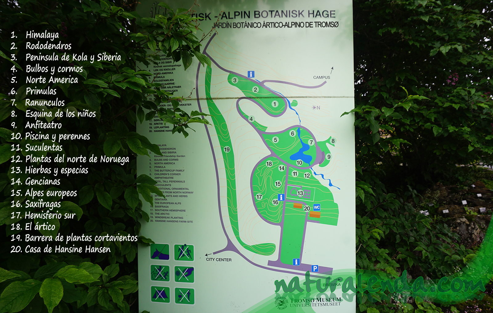 mapa del jardin botanico artico alpino de tromso