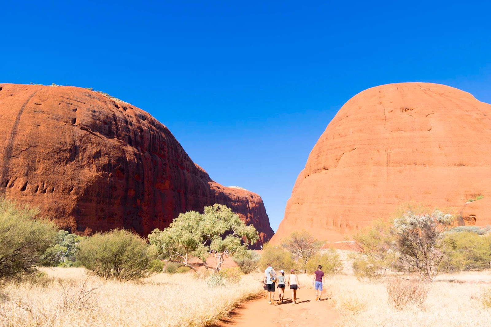 the kata tjuta walk