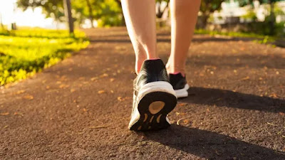 brisk walking, daily walk, Health Benefits of Walking Every Day, morning walking benefits, walker, walking benefits, walking for health, walking for weight loss, walking excercise