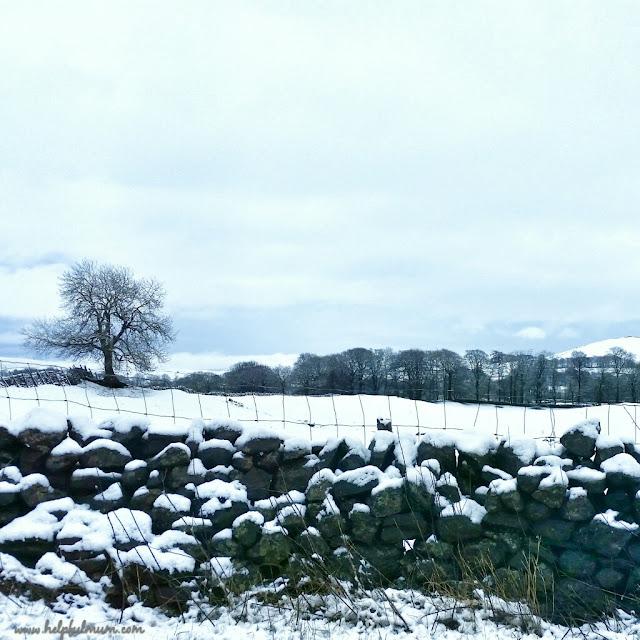 snowy dry stone wall
