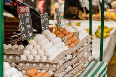 7 Tips Berbisnis Ayam Petelur Bagi Pemula