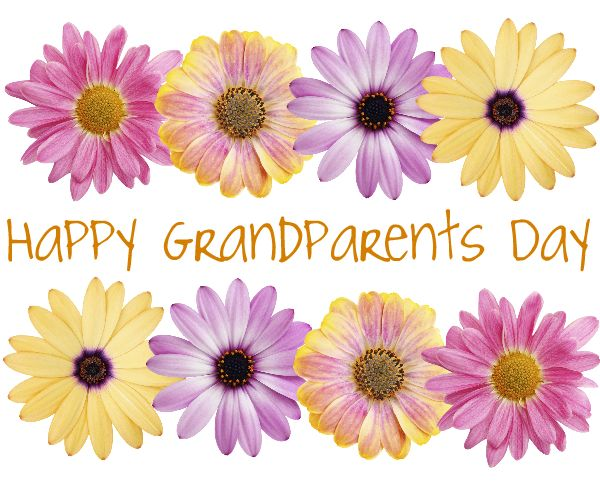 Happy Grandparents day flowers
