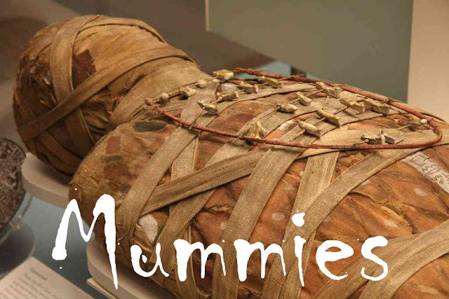 Mummies - Egypt