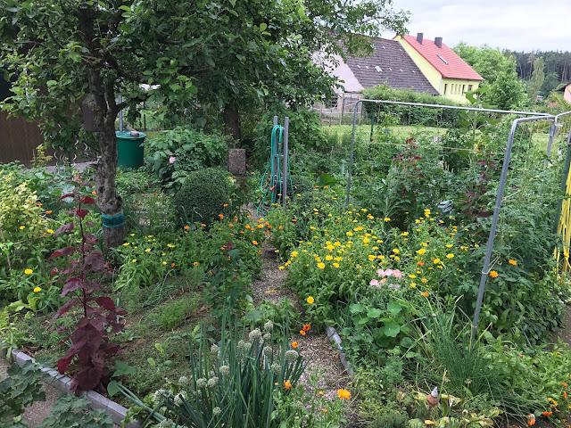 der Selbstversorger- Gemüsegarten alles Bio und Mischkultur (c) by Joachim Wenk