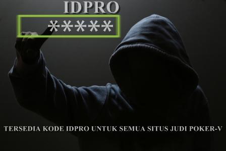 IDPRO.INFO