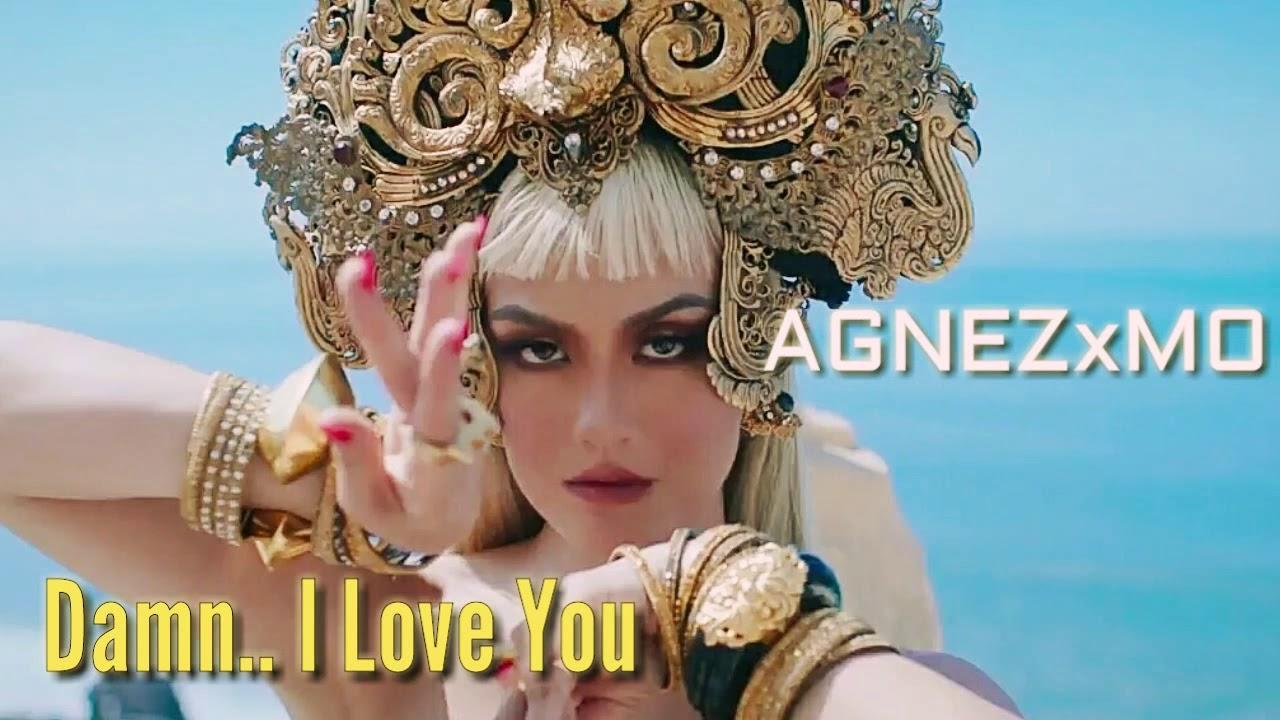 Lirik lagu agnes damn i love you dan terjemahannya
