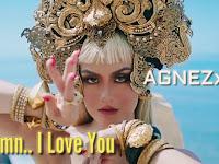 Lirik Lagu Agnez Mo – Damn I Love You dan Terjemahan Indonesia