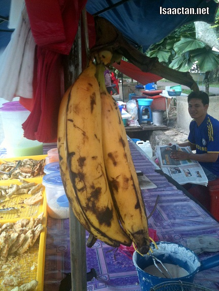 Huge bananas