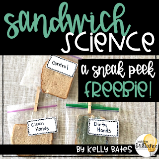 Bread Mold experiment on TpT Freebie!