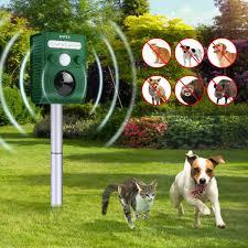 ultrassônicos para cães
