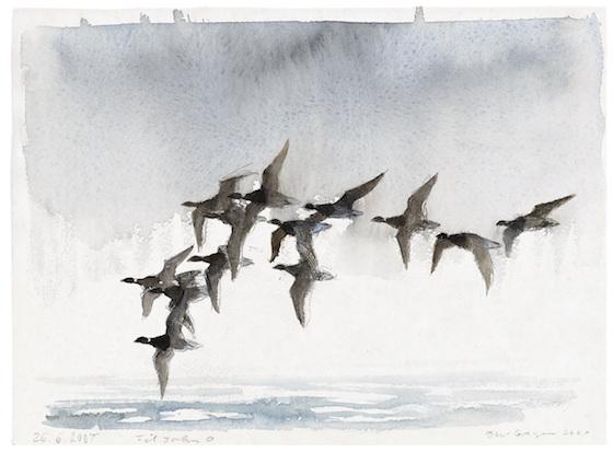 Jens Gregersen:Trækfugle. Akvarel