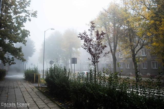Urząd miasta otoczony mgłą..