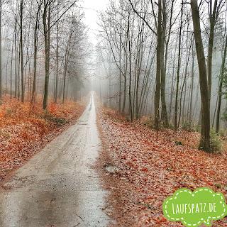 Laufen Silvesterlauf Winter Regen Straße