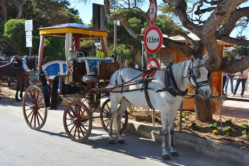 General Impressions Rabat Malta horse and carriage