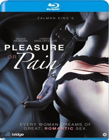 Pleasure or Pain (2013) English 480p BluRay x264 300MB ESubs Movie Download