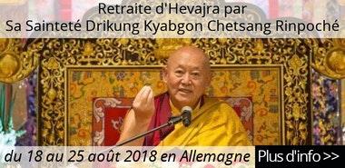 http://www.milareparetreat.org/index.php/en/chetsang-hevajra-retreat-2018