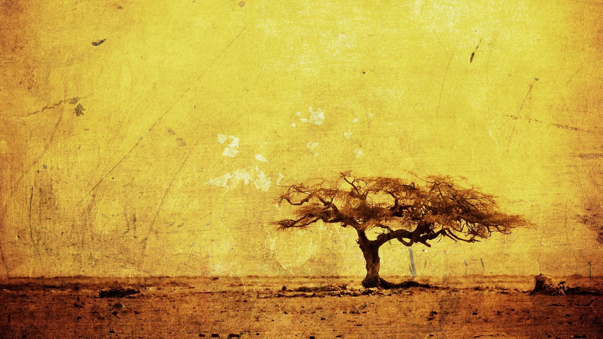 thanksgiving hd wallpaper widescreen 1920x1080 - photo #40