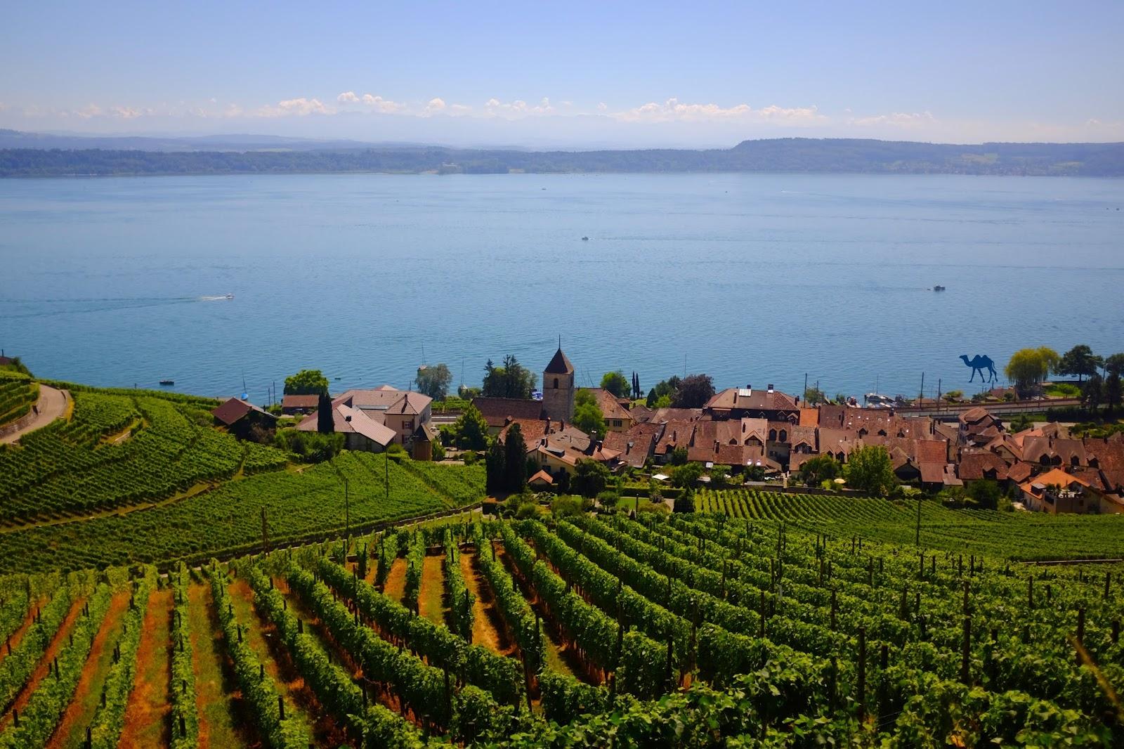 Le Chameau Bleu - Lac de Bienne - Séjour en Suisse
