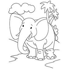 Baby Elephant At Forest Coloring Sheet