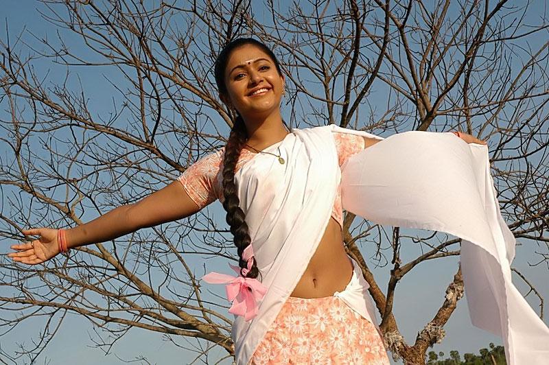 Actress Poonam Bajwa Sexy Navel Pictures
