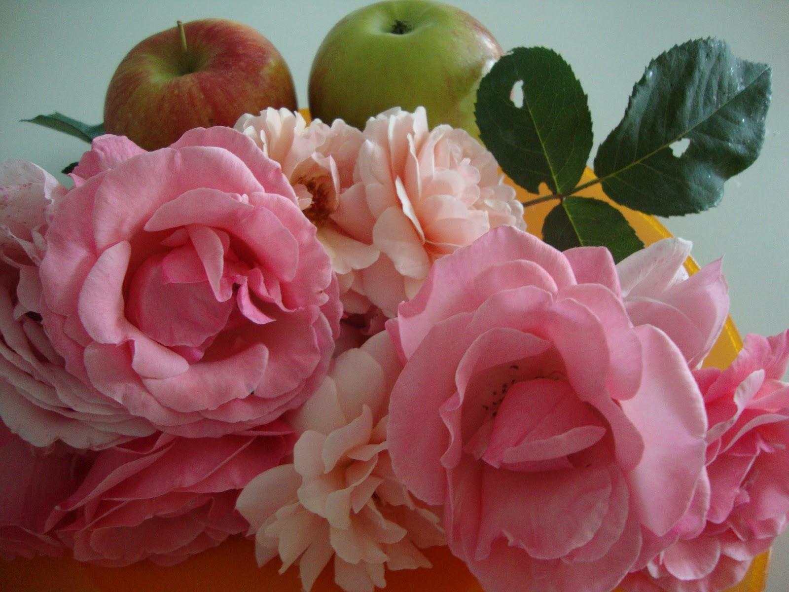 Le Ricette Di Chara Confettura Di Petali Di Rosa E La Mela