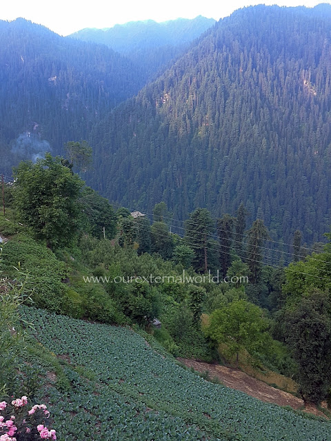 Shoja, Indian Travel Blog, Weekend getaway