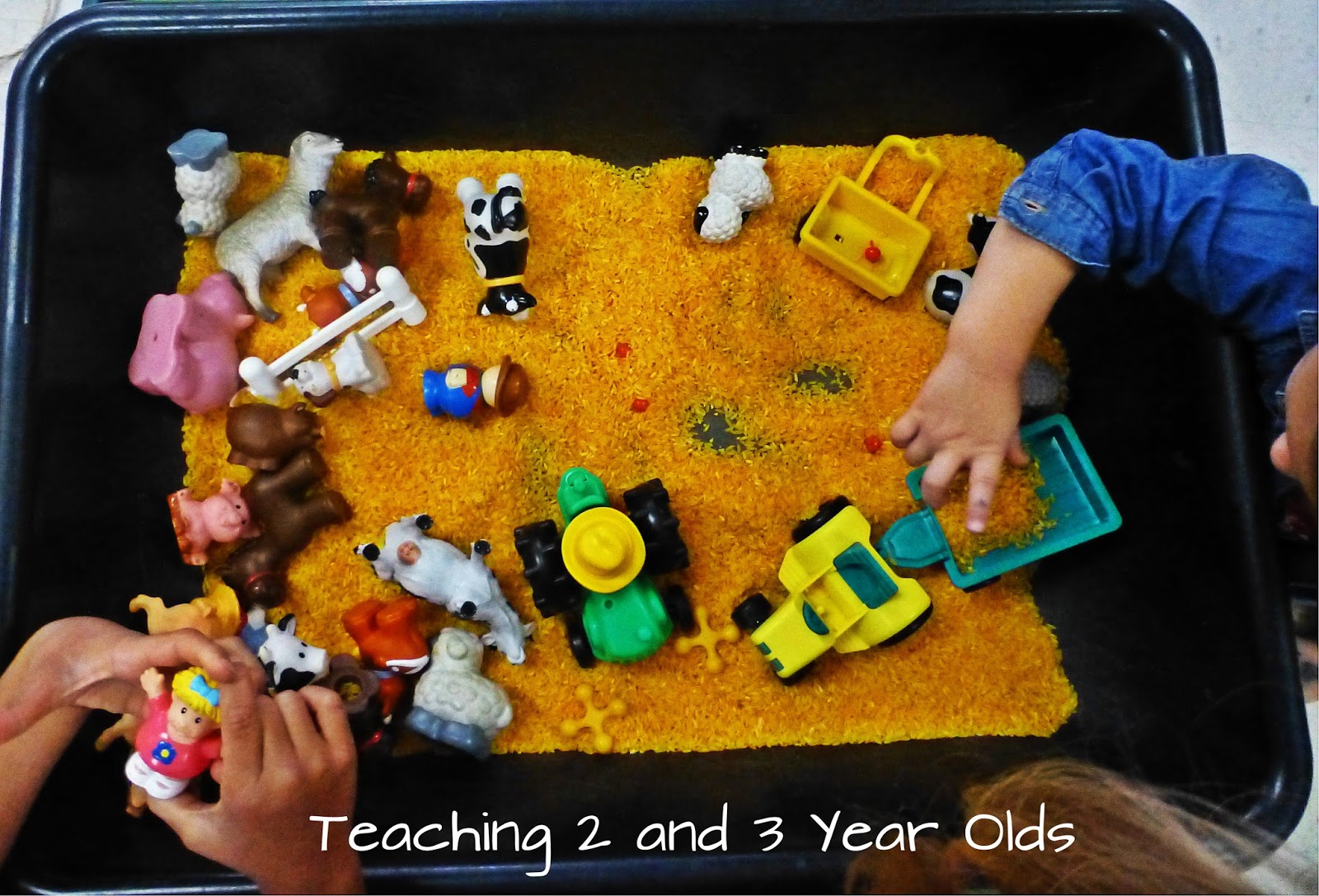 Teaching 2 And 3 Year Olds Preschool Ideas For The Sensory Table