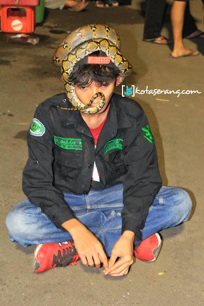 KEPATIL (Keluarga Pecinta Reptil) - KotaSerang.Com