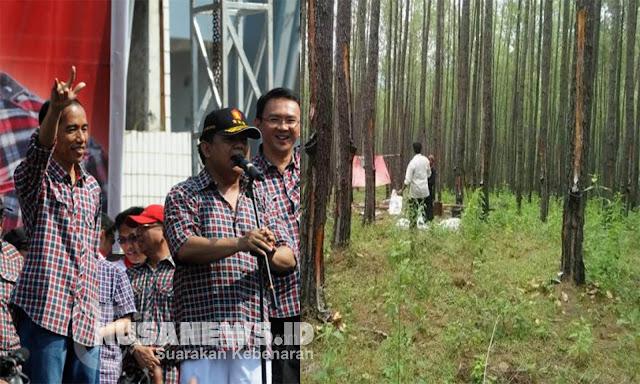 Gerindra: Biaya Kampanye Jokowi Dulu dari Hasil Kelola Lahan Prabowo