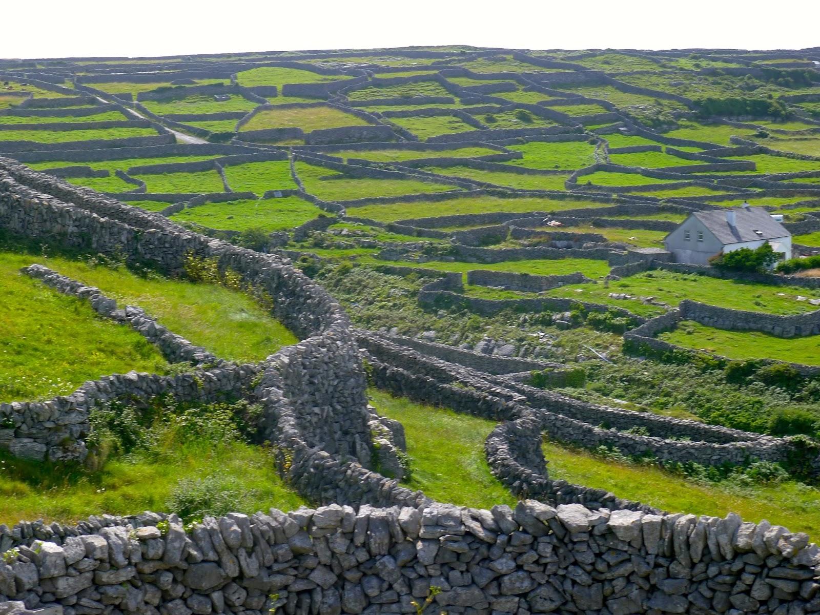 Building Irish Stone Walls