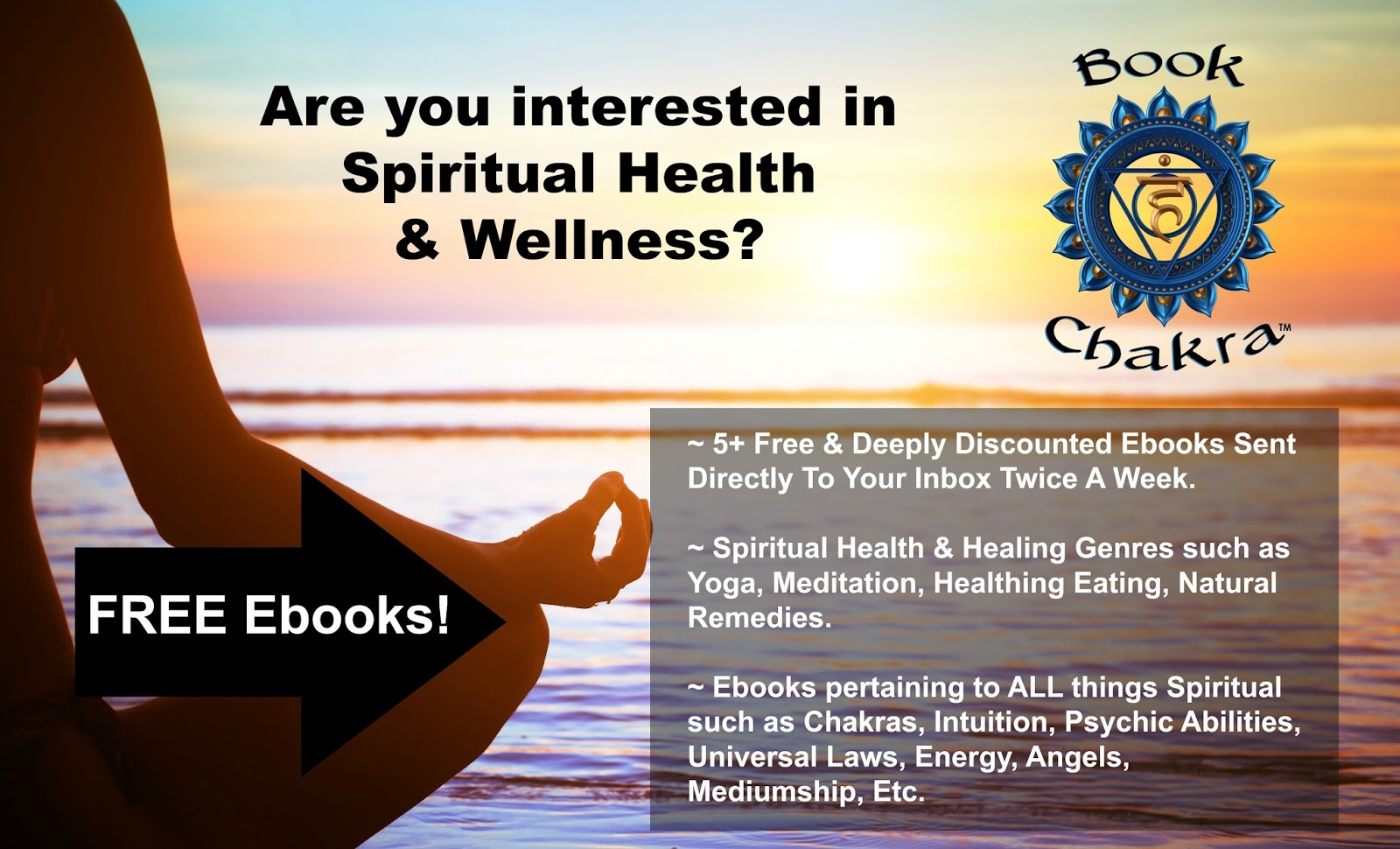 Are you interested in spiritual health wellness healthy eating if you have a spiritual book youd like to promote you can click here fandeluxe Epub