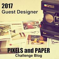 Pixels & Paper Challenge Blog