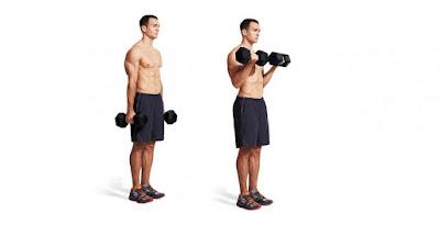 Standing Dumbbell Curl melatih otot biceps